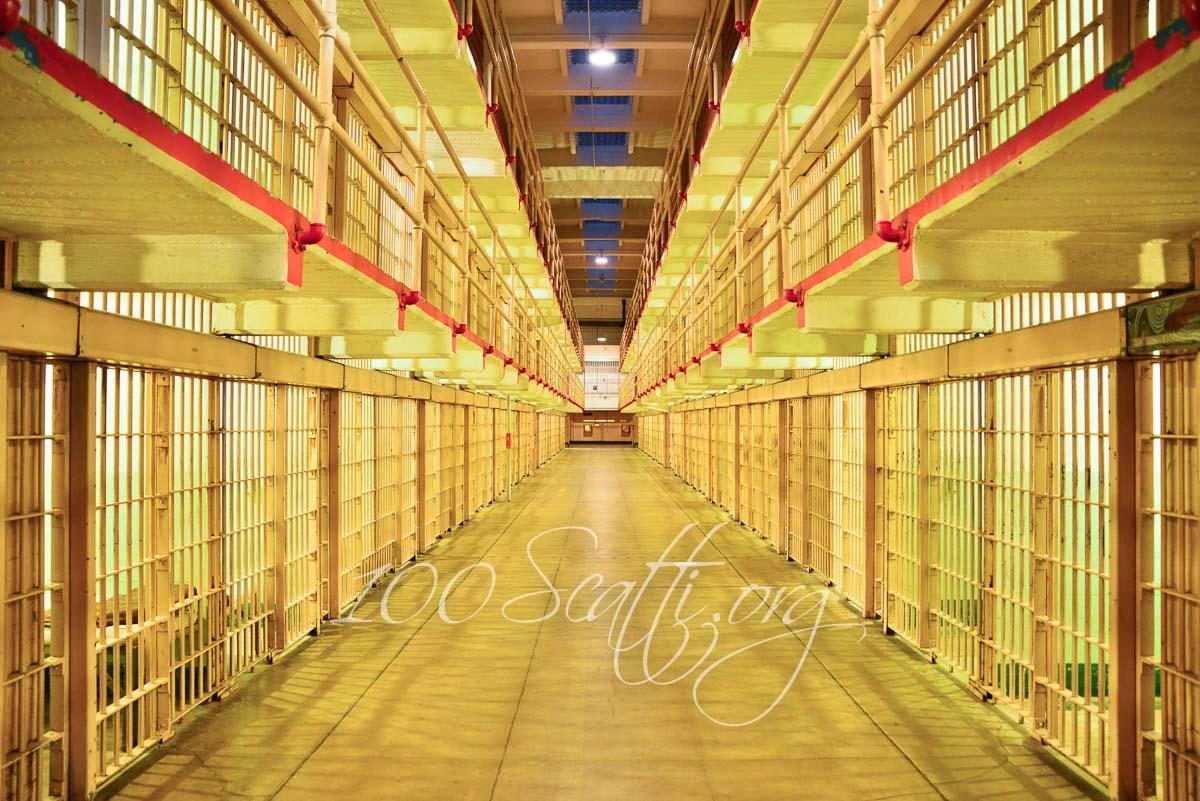 Alcatraz_.jpg